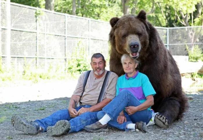 Бурый Медведь: История с хорошим концом