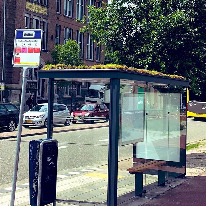 В Нидерландах установили 316 автобусных остановок, оборудованных как убежища для пчел