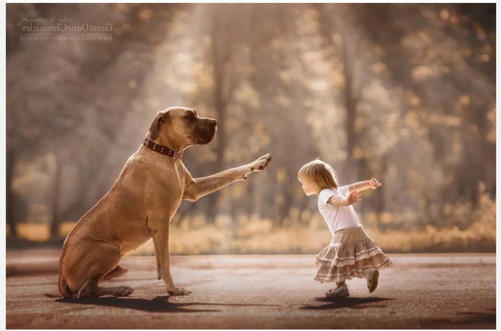 Беззаботность в каждом кадре: искренняя и жизнерадостная фотосессия ребенка и его лучших друзей