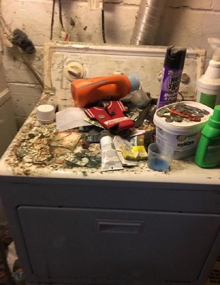Мужчина пришел в настоящий ужас, когда увидел, что квартиранты оставили в его квартире: фото