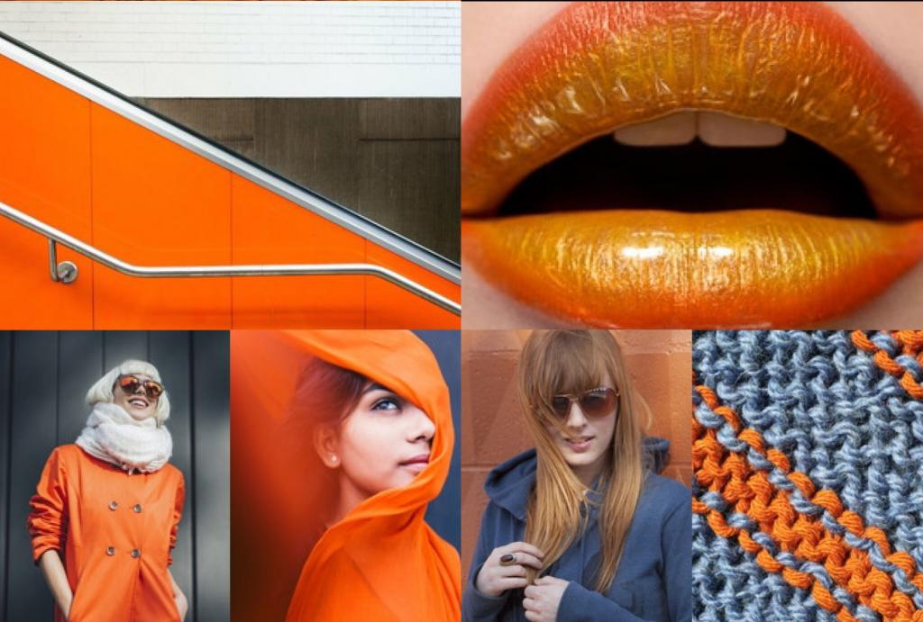 Фруктовый голубь и оранжевый тигр: эксперты назвали самые модные цвета этой осени