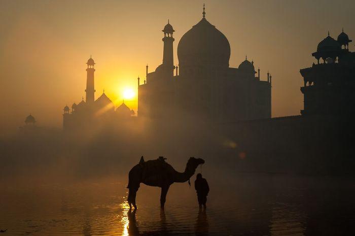 19 августа отмечают Всемирный день фотографии. Вот лучшие фото за прошедший год