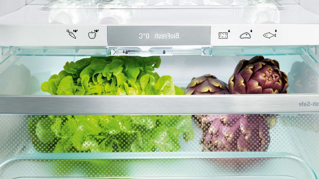Моя свекровь научила меня содержать продукты в холодильнике в порядке. Делюсь советами