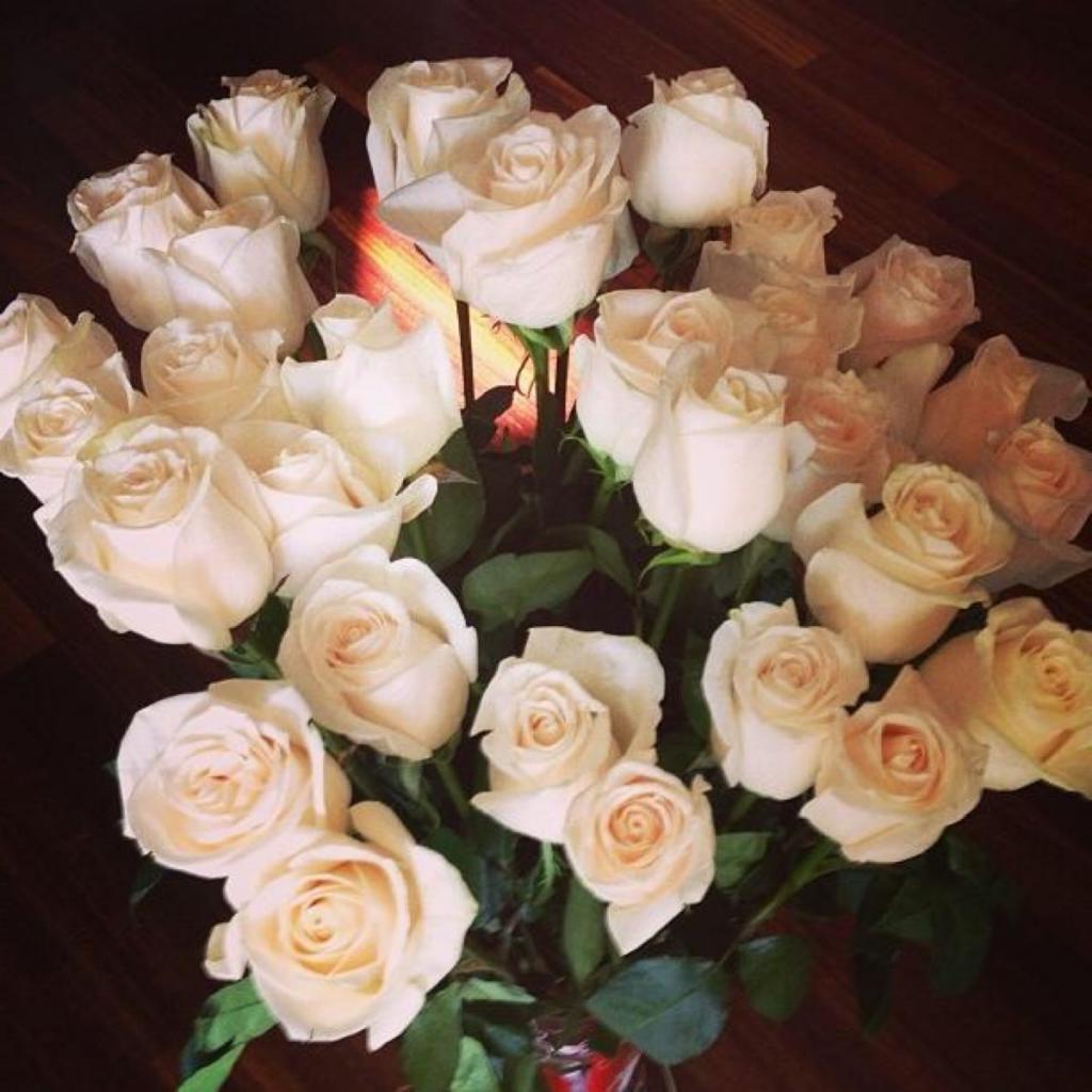 голубцы подарили розы фото самом