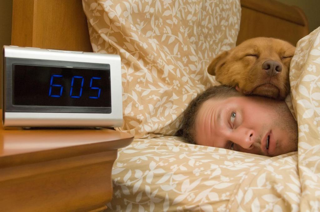 Так должна ли ваша собака спать рядом ночью. Что говорят психологи