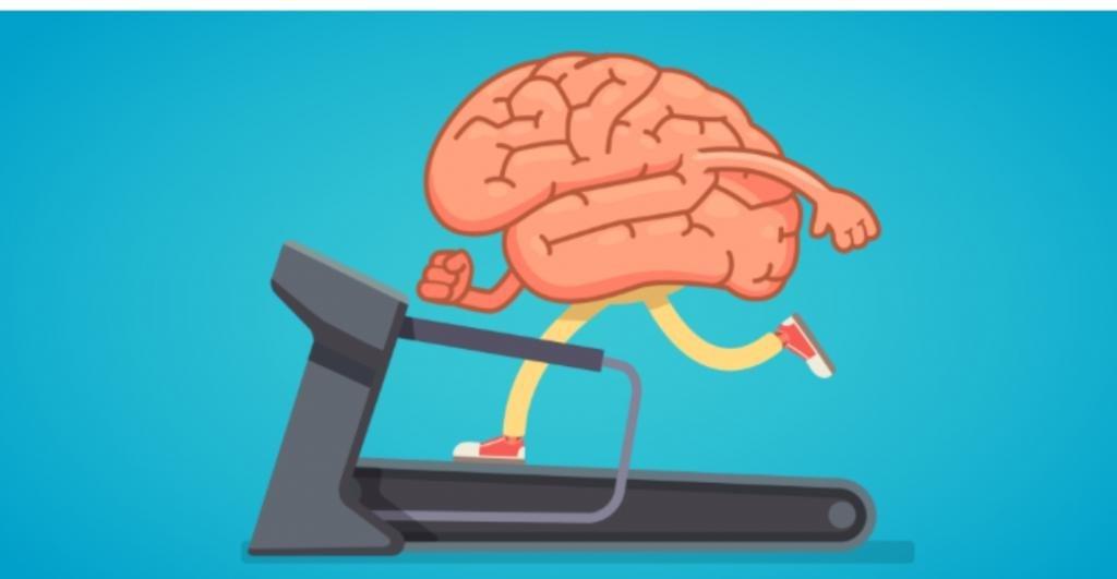 Сжатый кулак, чтение вслух и другие упражнения, которые хорошо тренируют память