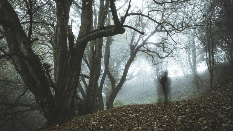 Плесень, игра света: ученые назвали причины, почему люди могут видеть призраков