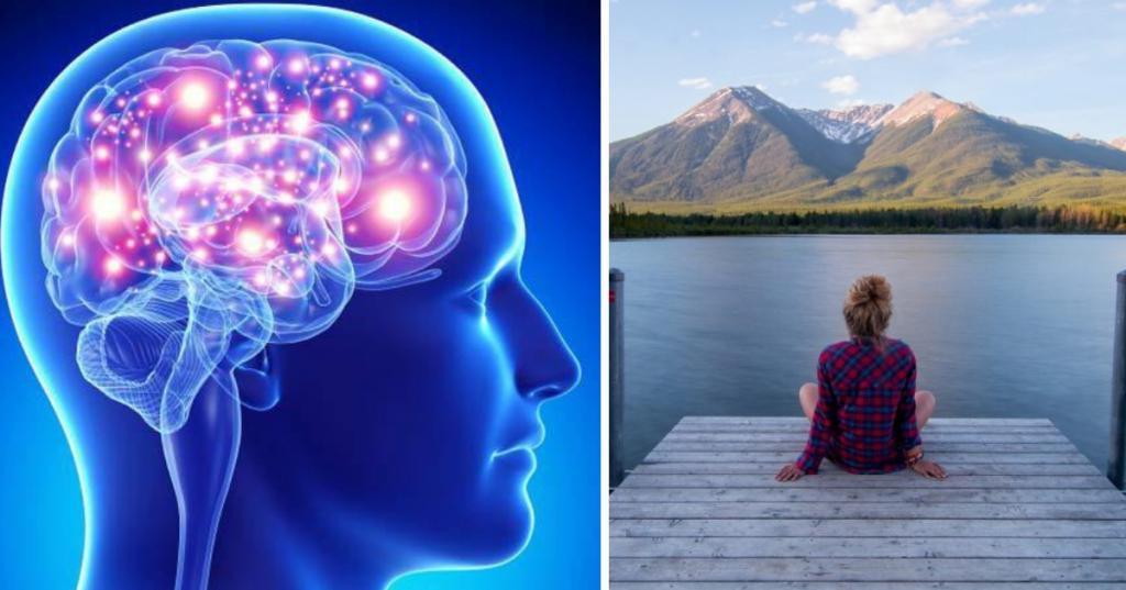 Любите тишину? Специалисты объясняют, почему это полезно для мозга и что происходит с нейронами