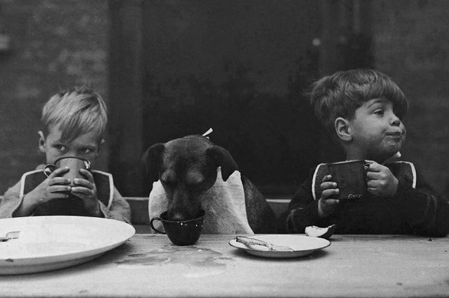 18 потрясающих черно-белых фотографий, в которых скрывается глубокий смысл