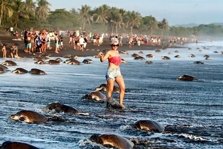 10 случаев, когда туристы оказали пагубное влияние на чудо природы и исторические места