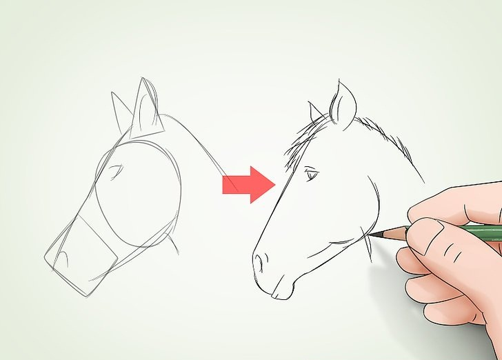 Как научиться рисовать, не посещая специальные курсы: советы опытного преподавателя