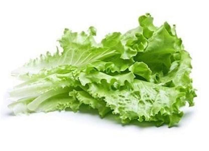 Польза ежедневного употребления салата: хорошее пищеварение, похудение и молодость