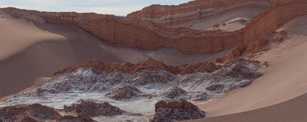 Пустыня Атакама в Чили может спасти многие жизни: все дело в уникальных бактериях в ее почве