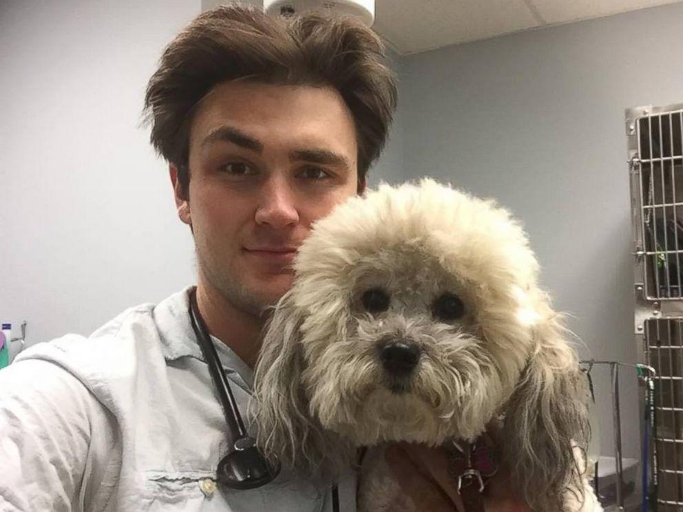 Ветеринар, которого обожают животные. У него особый подход к каждому пациенту