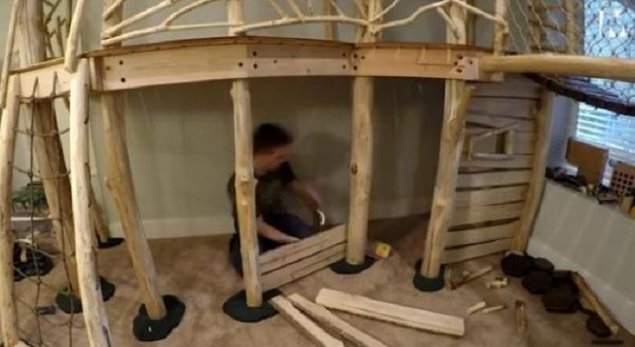 Дети просили у отца домик на дереве: он провел 8 месяцев в подвале и создал его там