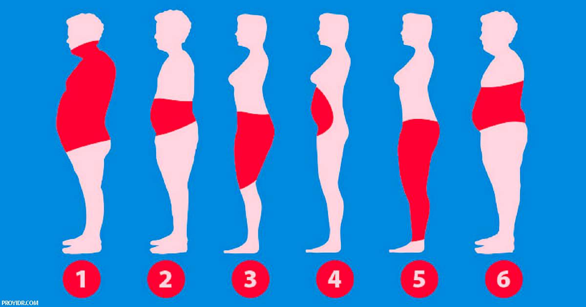 6 типов жира в организме   и как избавиться от каждого из них