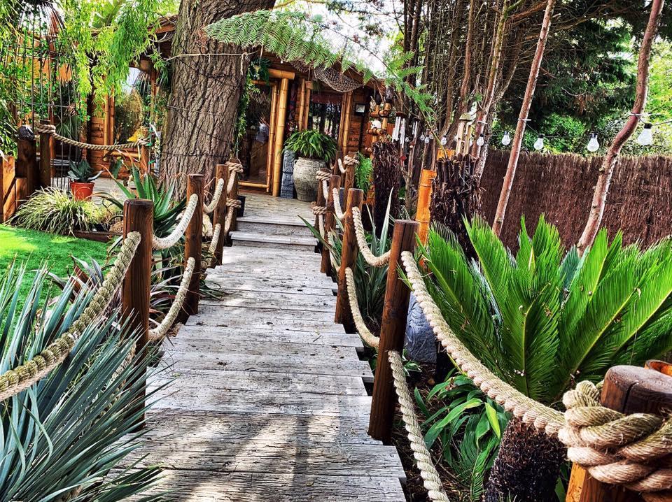 Теперь им не нужны дорогие круизы: супруги оборудовали в своем саду настоящий тропический рай