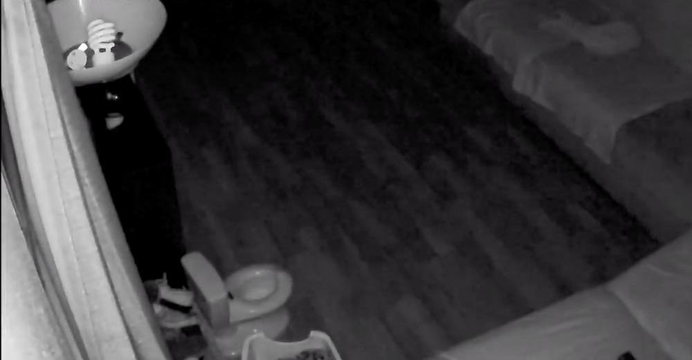 Мужчина не мог понять, кто пользуется горшком ребенка, и установил камеру (видео)