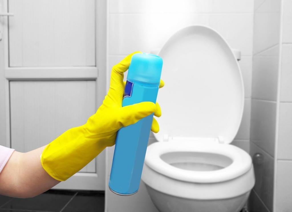 Все будет пахнуть: освежитель воздуха для туалета своими руками (просто и экономно)