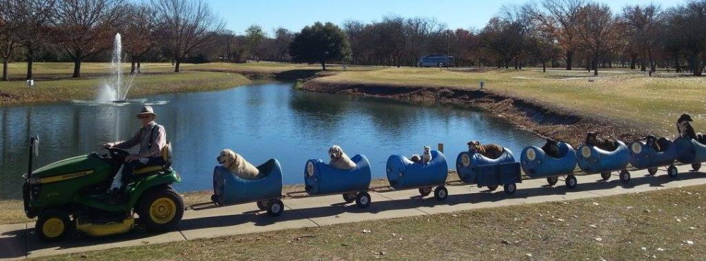Пенсионер, приютивший десятки бездомных собак, построил специальный поезд для выгула всех своих питомцев