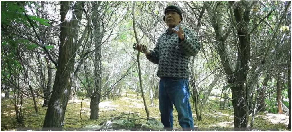 Индийский фермер преуспел там, где многие потерпели неудачу: он посадил лес посреди пустыни