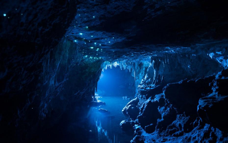 Светящиеся червячки в пещерах Новой Зеландии: фотографу понадобился год, чтобы сделать эти великолепные фото