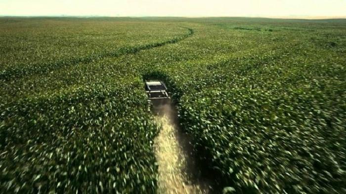 Фильмы без спецэффектов: 500 га кукурузы были высажены для  Интерстеллара