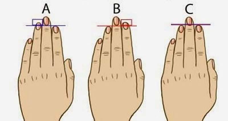 Соотношение длины пальцев может многое рассказать о характере мужчины
