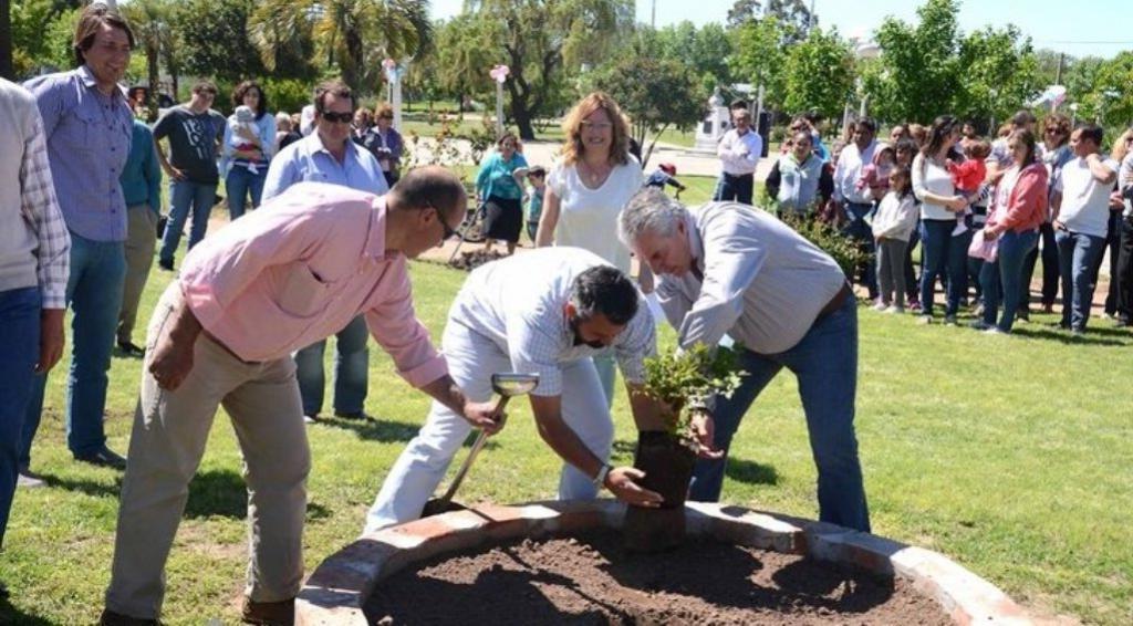Родился ребенок   посадили дерево: маленький аргентинский город 24 года блюдет традицию, благодаря которой утопает в зелени. Достойный пример для всех
