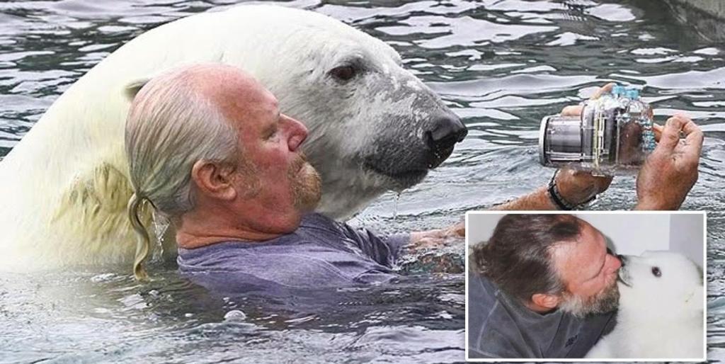 Мужчина уже 23 года дружит с белым медведем: они понимают друг друга с полуслова