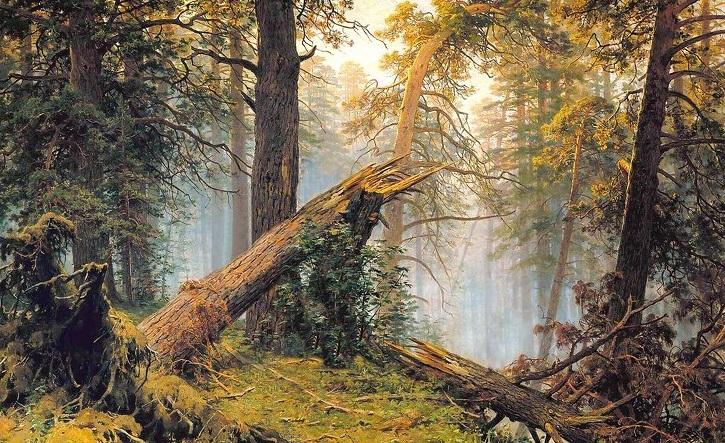 Медведи на картине  Утро в сосновом лесу  не были нарисованы Шишкиным. Неожиданные загадки произведений мирового искусства