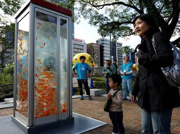 10 примеров городских арт объектов: старые телефонные будки   отличный аквариум,  шляпы  от солнца на каждой лавочке и многое другое