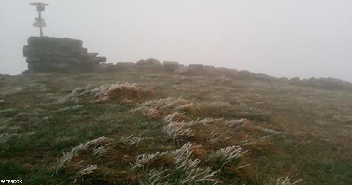 В Украине выпал первый снег. Вот фото