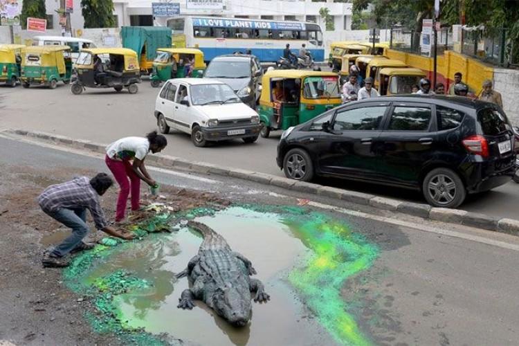 Ямы на дорогах: можно запустить в них крокодила или поселить русалку. Креативные способы украсить выбоины (фото)