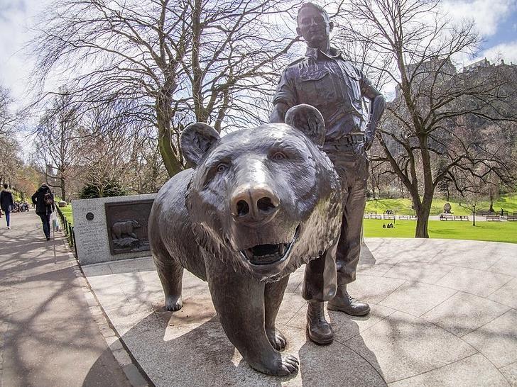Служу Отечеству: история медведя, сражавшегося с фашистами на стороне польской армии