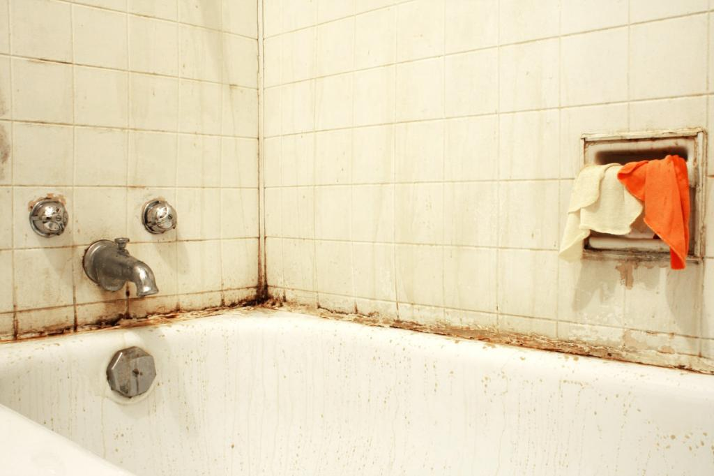 4 способа быстро очистить ванную от ржавчины: нужны сода, лимон, уксус