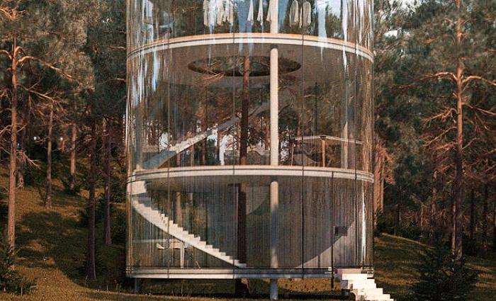 Прозрачный дом вокруг дерева: архитектор из Казахстана придумал новую концепцию