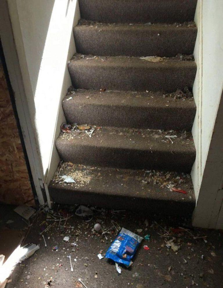 Горы мусора: мужчина не узнал свою квартиру после того, как там пожили квартиранты
