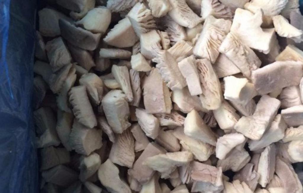 Свекровь рассказала, как правильно морозить грибы вешенки, чтобы они не слипались и в блюдах получались вкусными