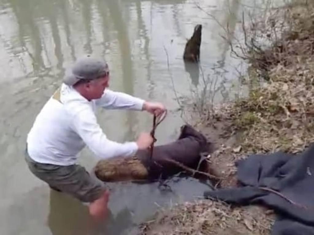 Мужчина думал, что вытащил из грязного ручья бобра. Но это оказалось другое животное