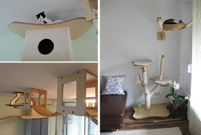 Настоящее приключение для питомцев! Люди превращают свои дома в игровые комнаты для кошек