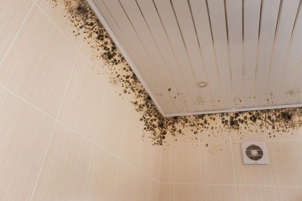 Мастера поделились секретами, как избавиться от плесени на потолке и стенах в ванной комнате