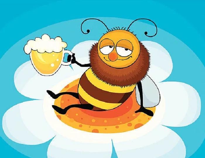 Необычное и оригинальное применение пива: оказывается, что его можно не только пить, им можно отвлечь пчел и найти еще немало применений
