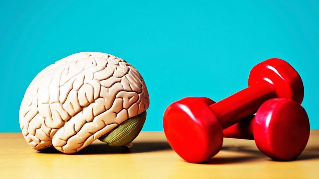 Перефразируя Маяковского:  Мозги обязаны трудиться ! 10 способов улучшить работоспособность своего мозга