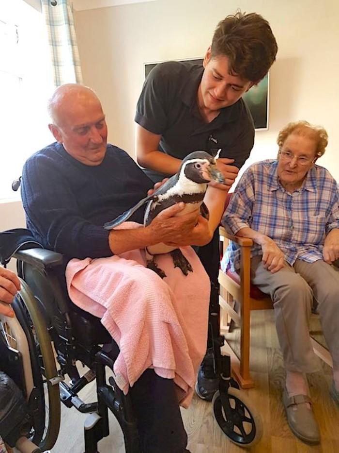99-летняя Джойс Гарднер мечтала увидеть живого пингвина. И ее желание исполнилось