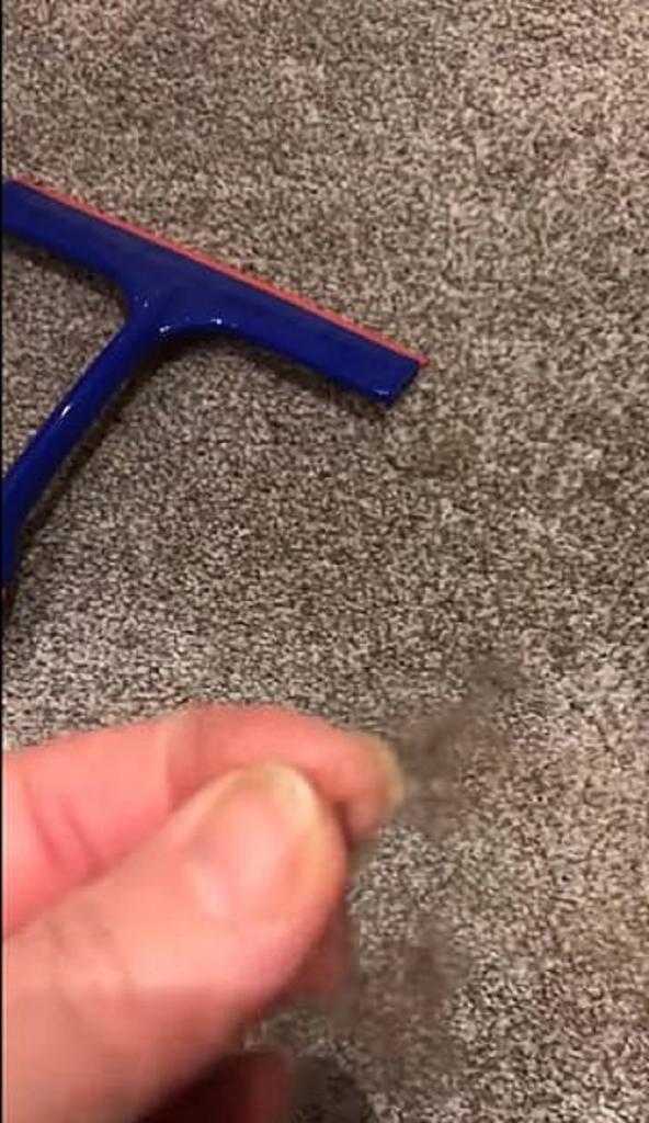 Женщина показала, как использовать скребок для мытья окон, чтобы избавиться от волос на ковре