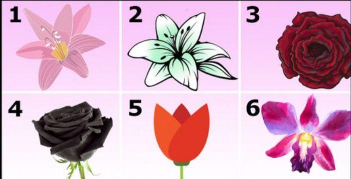 Выберите один из цветков и узнайте, почему окружающие любят вас: тест