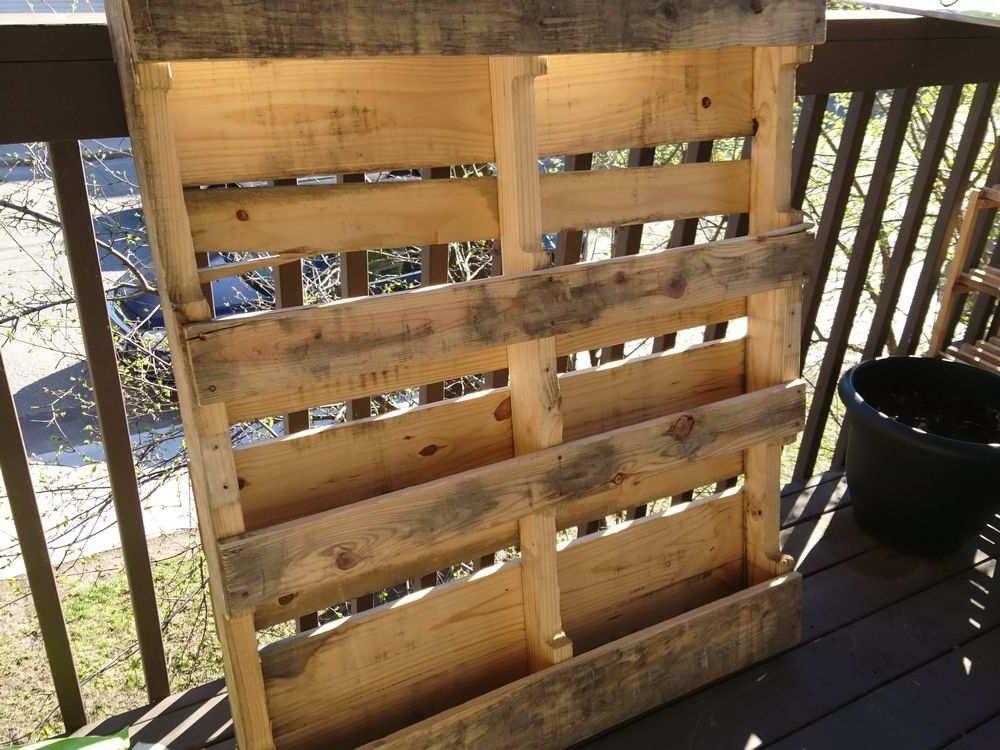 Как своими руками создать вертикальный сад дома из деревянного поддона