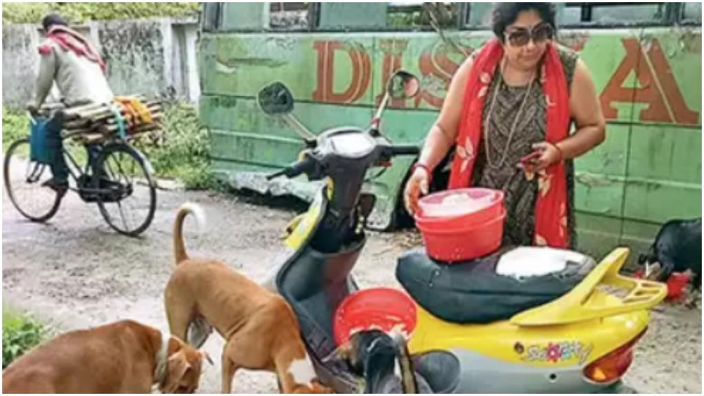 Индийская женщина продала свои драгоценности и взяла кредит в банке, чтобы накормить 400 бездомных собак