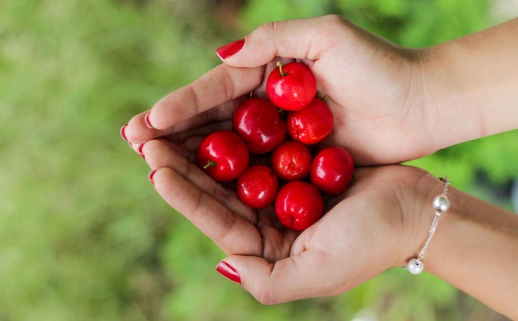 Что произойдет с телом, если каждый день есть райские яблочки: ответ эксперта